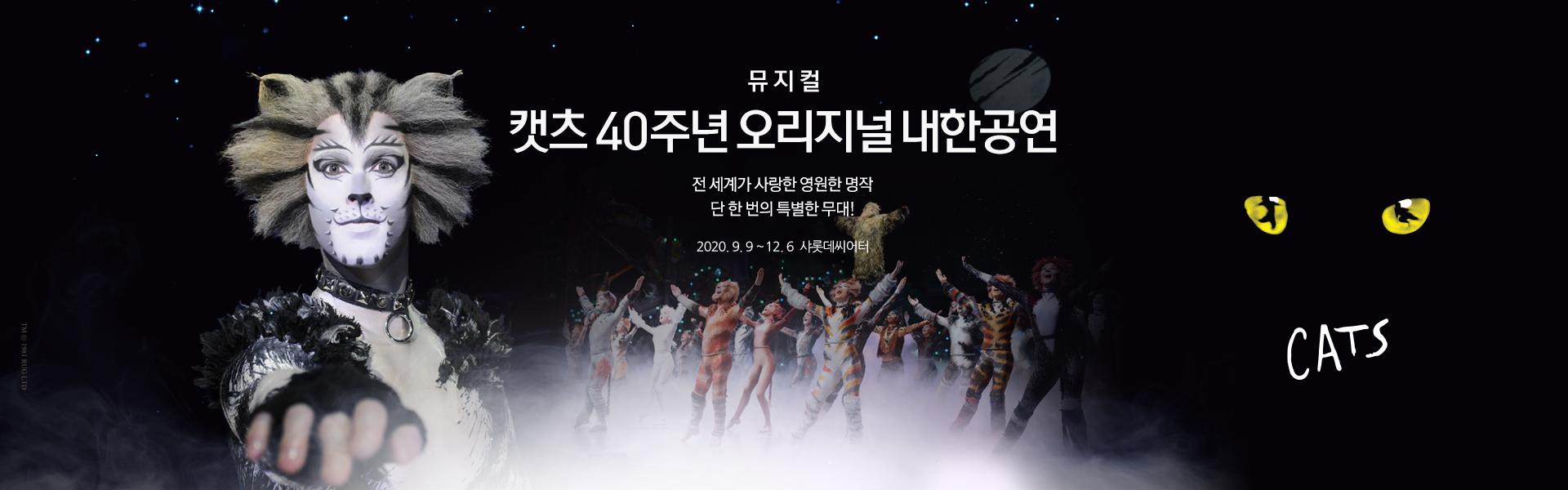 뮤지컬 <캣츠> 40주년 내한공연 - 서울 (Musical